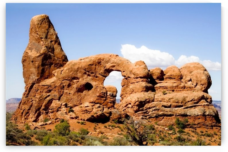 Arches National Park by Tara K