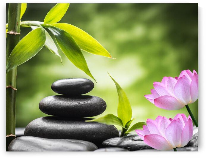 Meditation Stones and Lotus Flower by Jennifer Jones