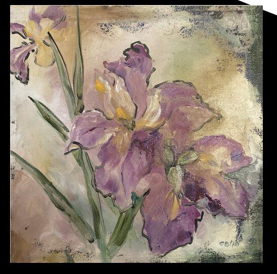 Iris by Cene