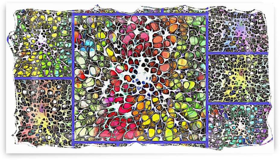 Crystal Musings Collage 1 by Dorothy Berry-Lound