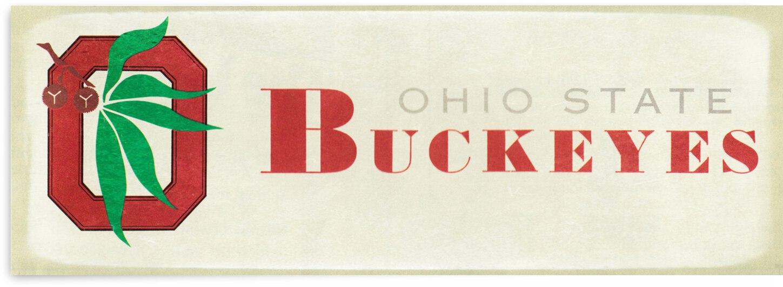 1973 Ohio State Buckeyes Retro Art | Row 1 by Row One Brand