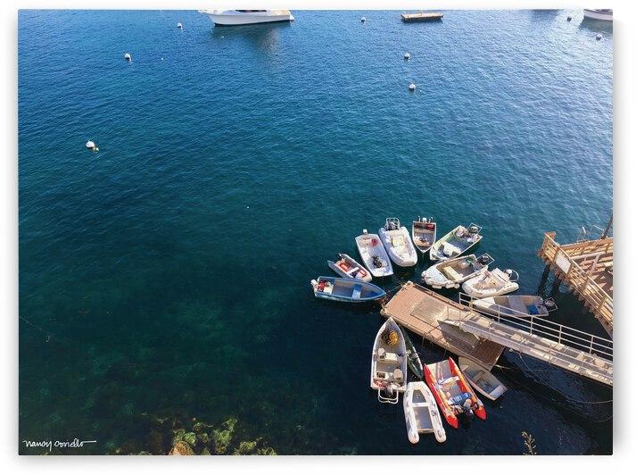 Catalina Island boats by Nancy Coviello