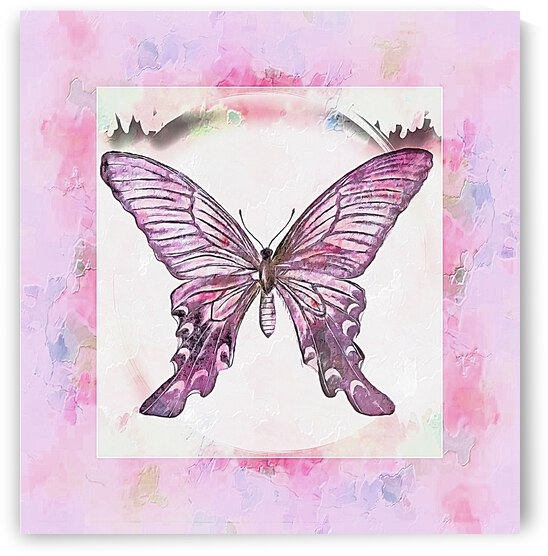 Purple and Pink Butterfly Design by Dorothy Berry-Lound