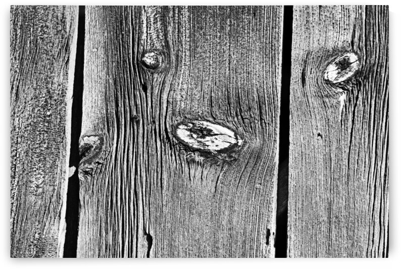 Knots And Grain Black And White by Deb Oppermann