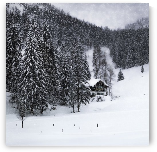 Bavarian Winter's Tale IX by Melanie Viola