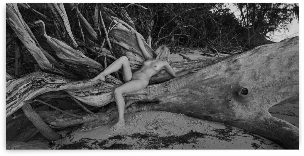 Wild beach by Dmiry Laudin