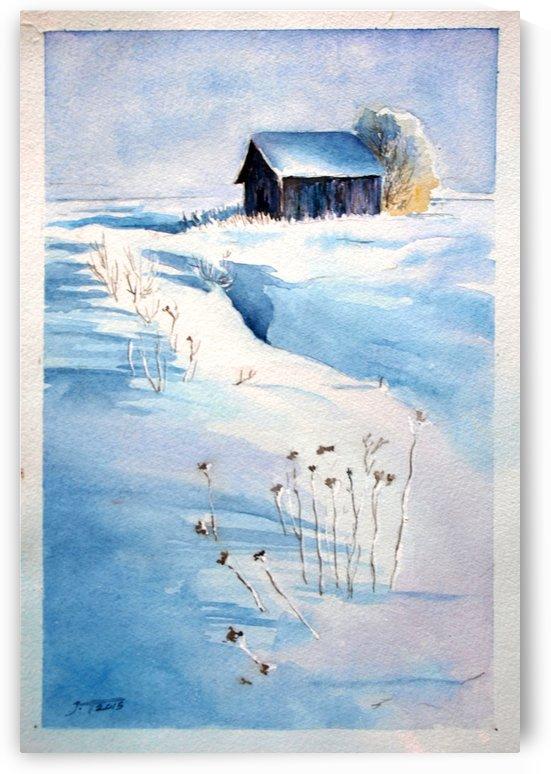 Snowy Day by JAMALEDDIN TOOMAJNIA
