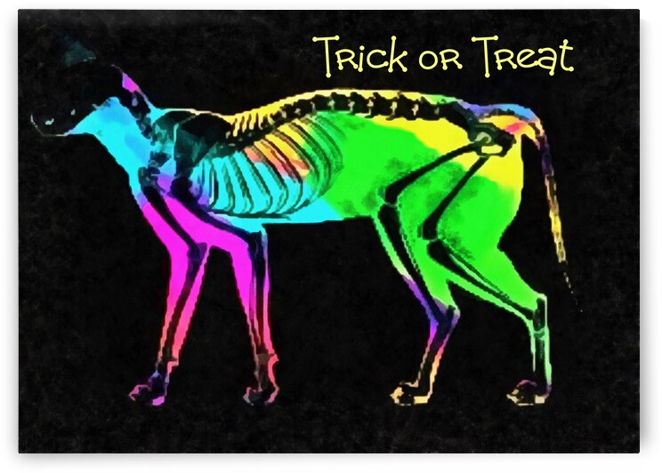 Trick or Treat by Dorothy Berry-Lound