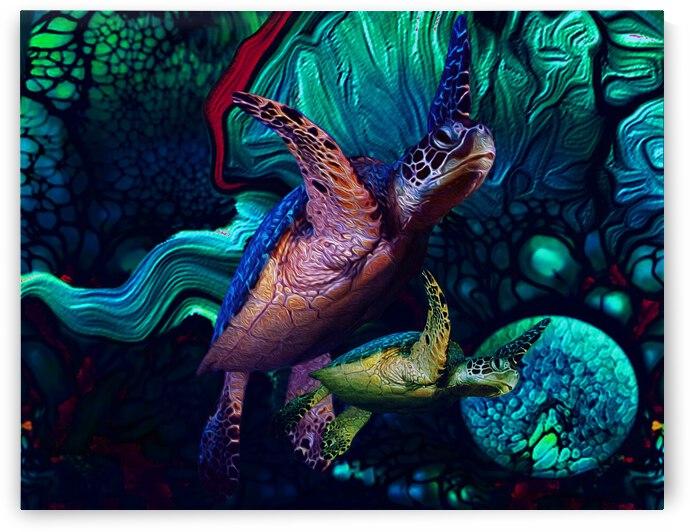 Turtles en Saison 3 by Aldane Wynter
