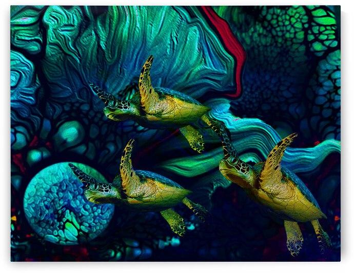 Turtles en Saison 8 by Aldane Wynter