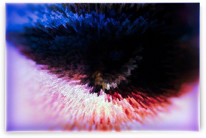 Up Close & Personal by Scott Hryciuk