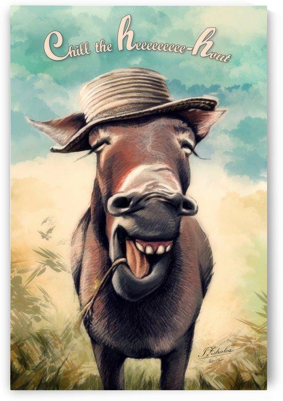 Donkey  by Ioana Zdralea