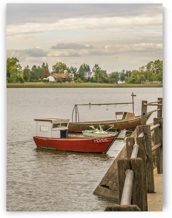 Santa Lucia River in Montevideo Uruguay by Daniel Ferreia Leites Ciccarino