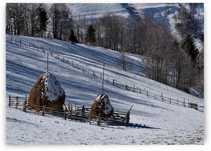Winter hills by Bajan Sorin