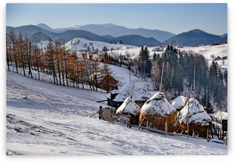 winter landscape by Bajan Sorin