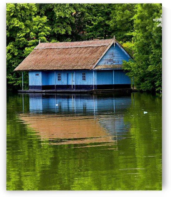 blue house by Bajan Sorin