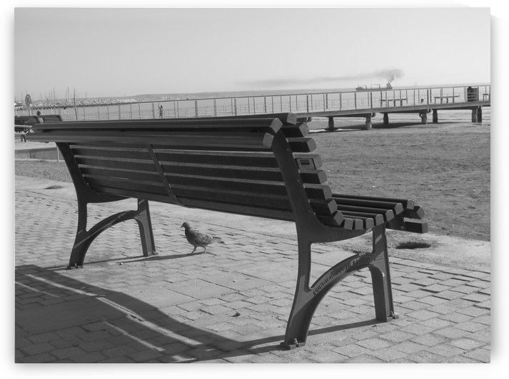 Bench with superb sea view along the coast in Larnaca, Cyprus by Vlad Radulian