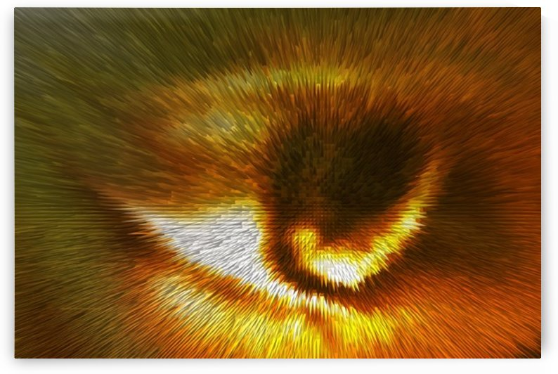 The Eye of The Beholder by Scott Hryciuk