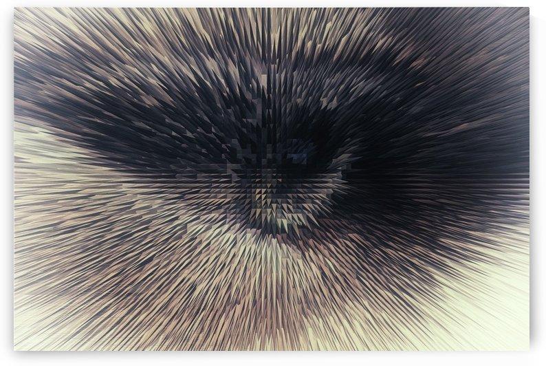 Eye on you 2 by Scott Hryciuk