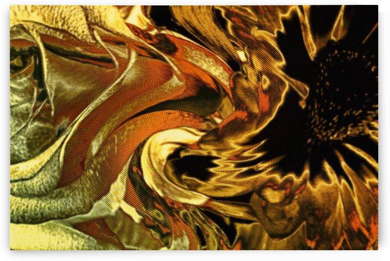 Golden Fusion by Scott Hryciuk