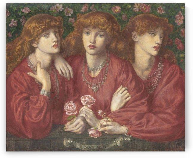 Rosa Triplex by Dante Gabriel Rossetti