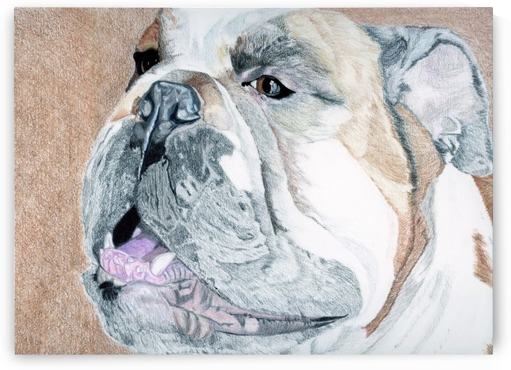 Bubba by Crystal Wacoche