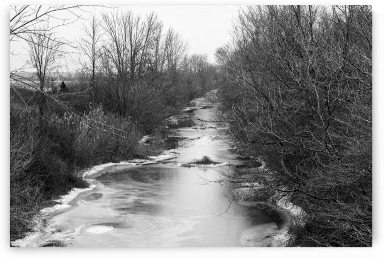 Frozen Wetlands by katie tremblay