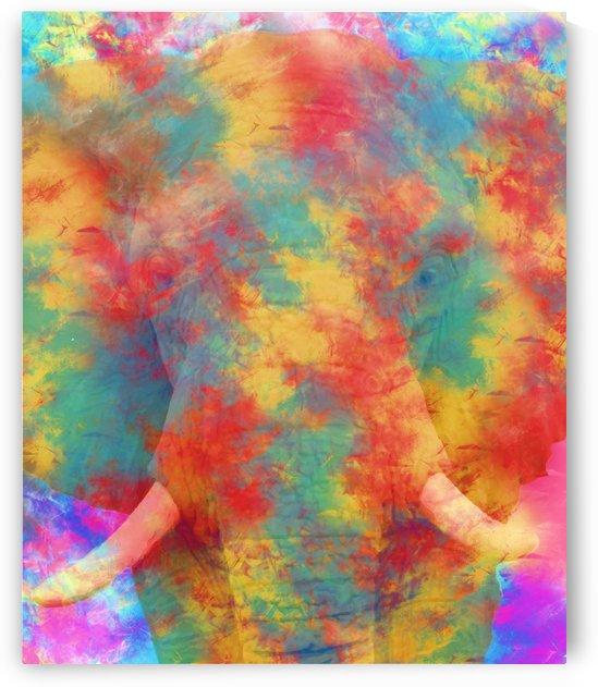 Abstract Elephant by Amir Faysal