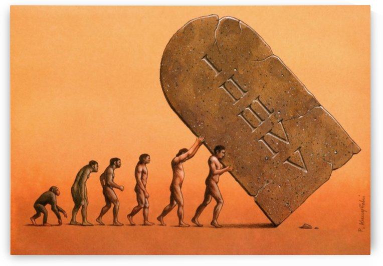 evolution by Pawel Kuczynski