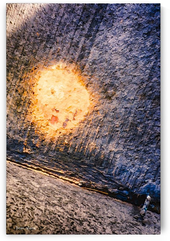 Splash of Yellow_130208_09_011 HXSYV by Don Vine