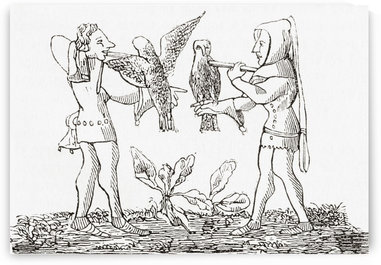 Falconry in the middle ages. From Le Magasin Pittoresque, published 1843. by PacificStock