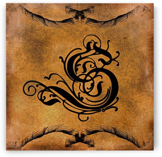 Beautiful Monogram Letter S by George Cuda