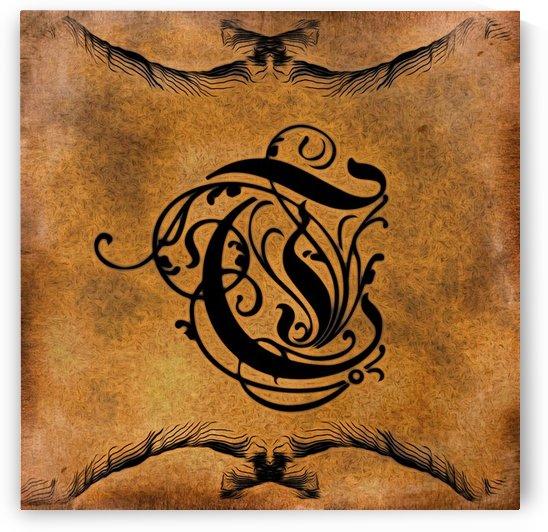 Beautiful Monogram Letter T by George Cuda