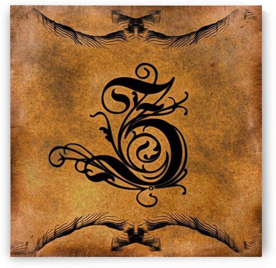 Beautiful Monogram Letter Z by George Cuda