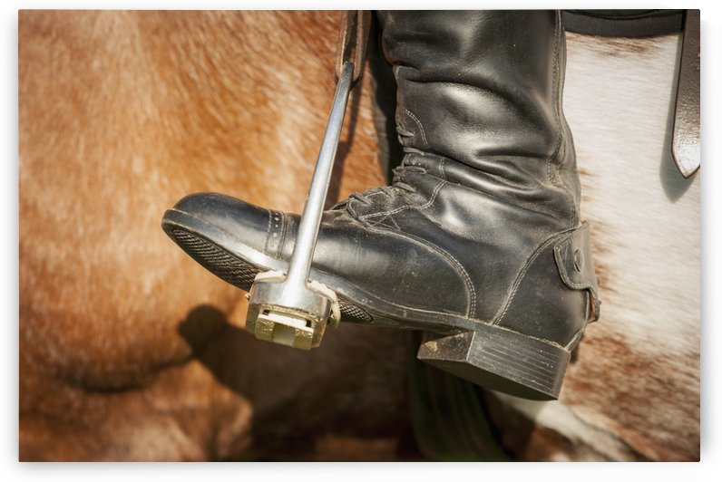Close up of a riding boot in stirrups in Baltimore County; Maryland, United States of America by PacificStock