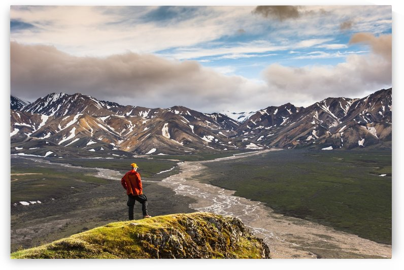 A man standing on a bluff at Polychome Pass with the Plains of Murie and the Alaska Range in the background, Denali National Park, Interior Alaska by PacificStock