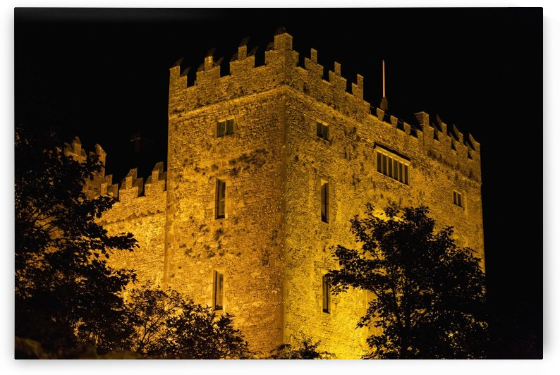 Night lights illuminating Bunratty Castle with silhouetted trees and black sky; Bunratty, County Clare, Ireland by PacificStock