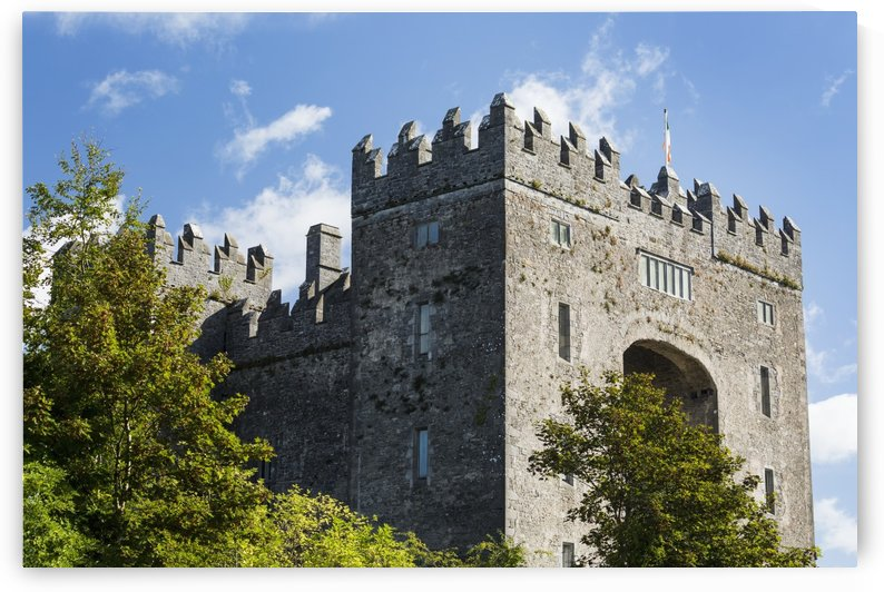 Stone castle with trees, blue sky and clouds; Bunratty, County Clare, Ireland by PacificStock
