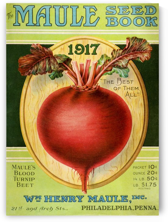 Historic Maule's seed book with illustration of blood turnip beet from 20th century. by PacificStock