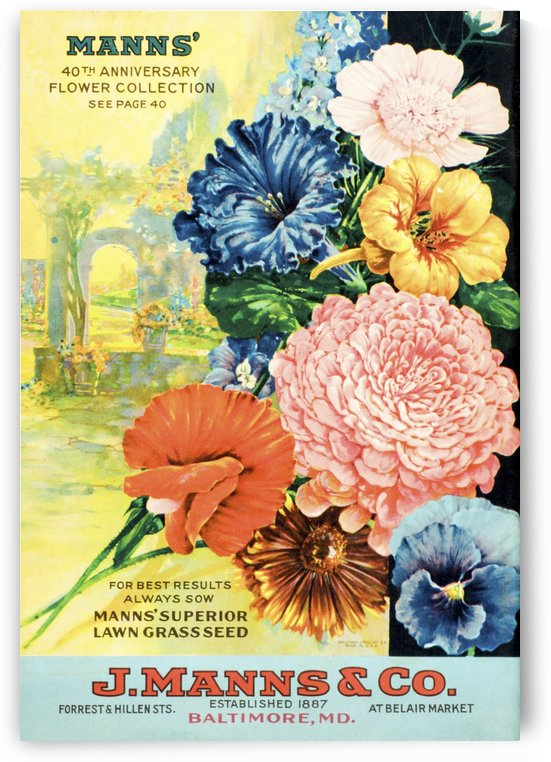 J. Mann's seed catalog with illustration of flowers from 20th century. by PacificStock