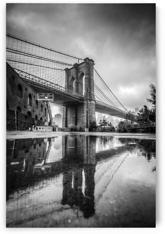 Reflections in Brooklyn by DLPSquared