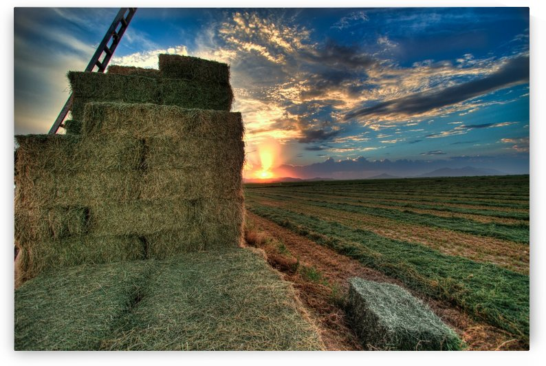 Haystack by DLPSquared