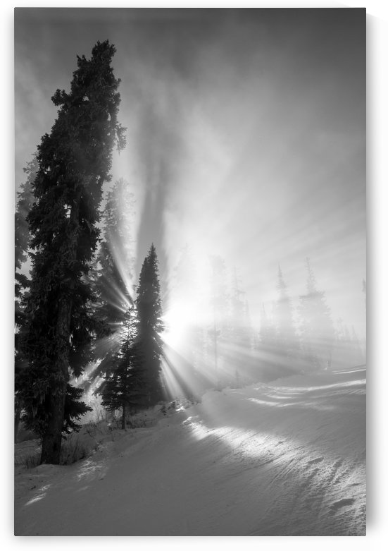 Frozen mist by DLPSquared