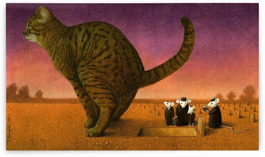 Cat by Pawel Kuczynski