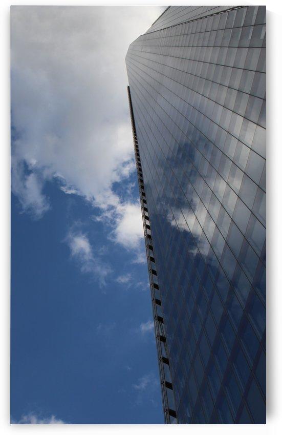 Mirror of the sky by sarah fairest