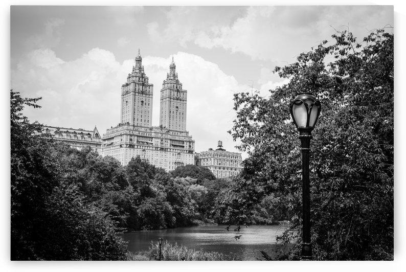 New York by Carlos M  Garate