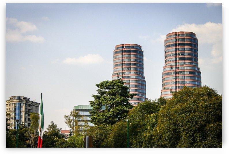 Mexico City by Carlos M  Garate