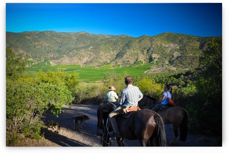Horseback exploration by Jure Brkinjac