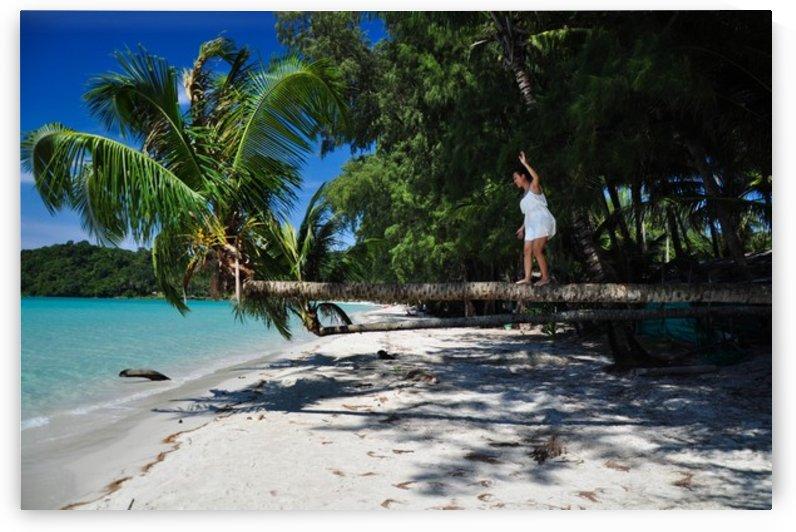 Walking on a palm tree by Jure Brkinjac