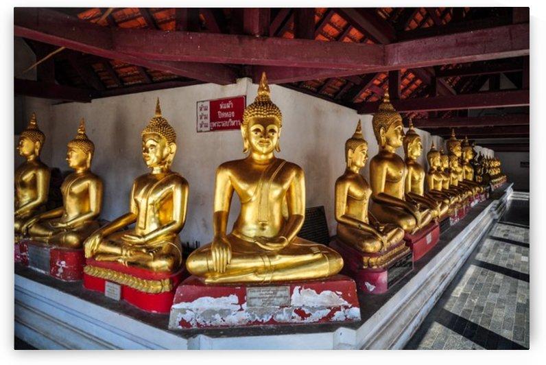 Buddhas by Jure Brkinjac